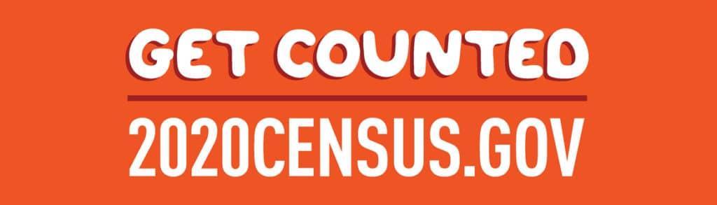 census 2020 bulletin